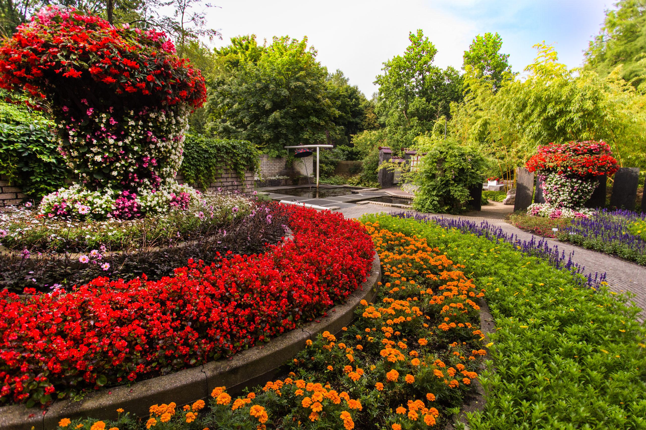 Der Viel-Farbengarten