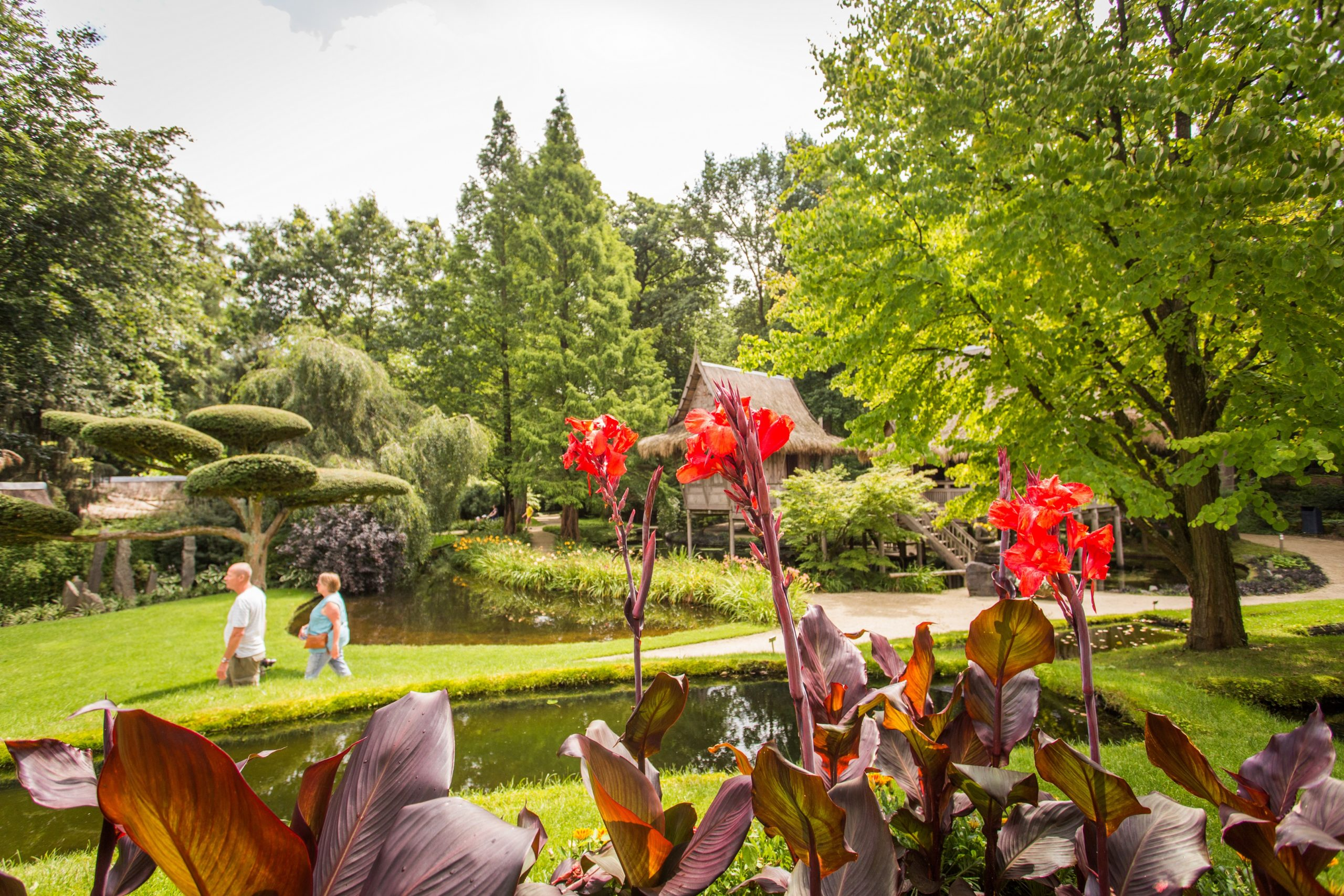 Oosterse Watertuin