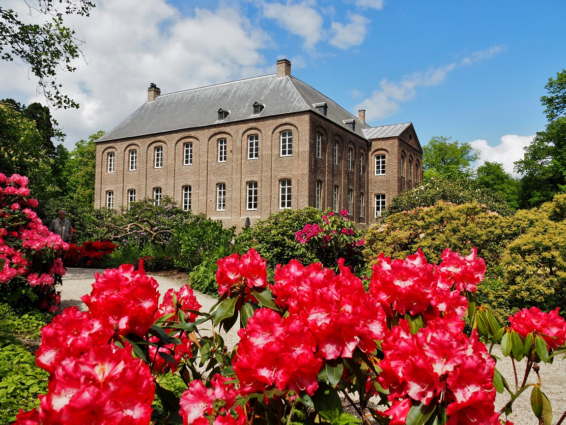 Kijkje in de Rhododendrontuin - Video