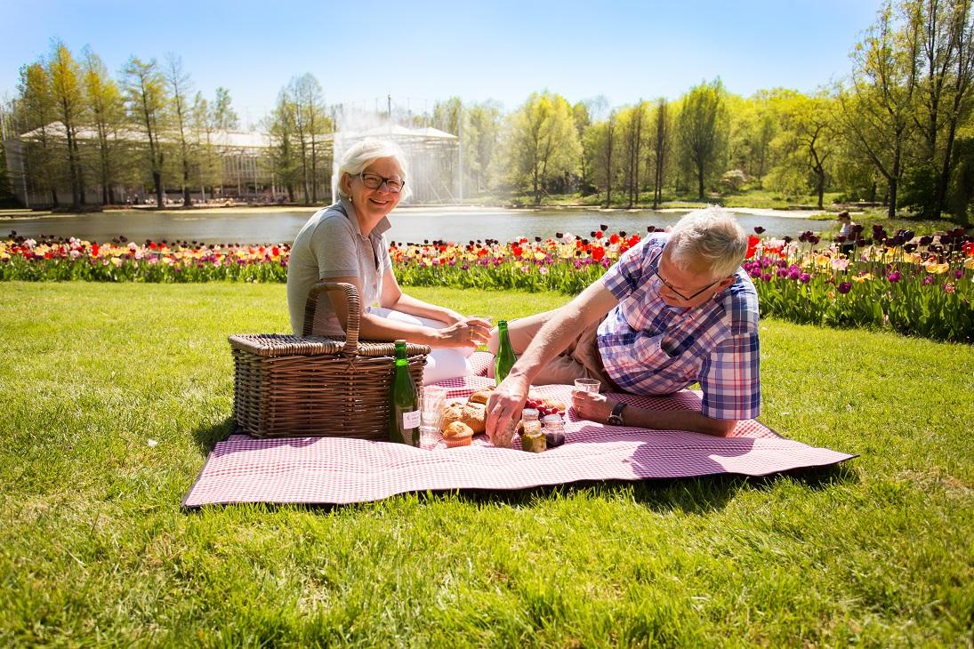 Ein Picknick zwischen Blumen und Pflanzen