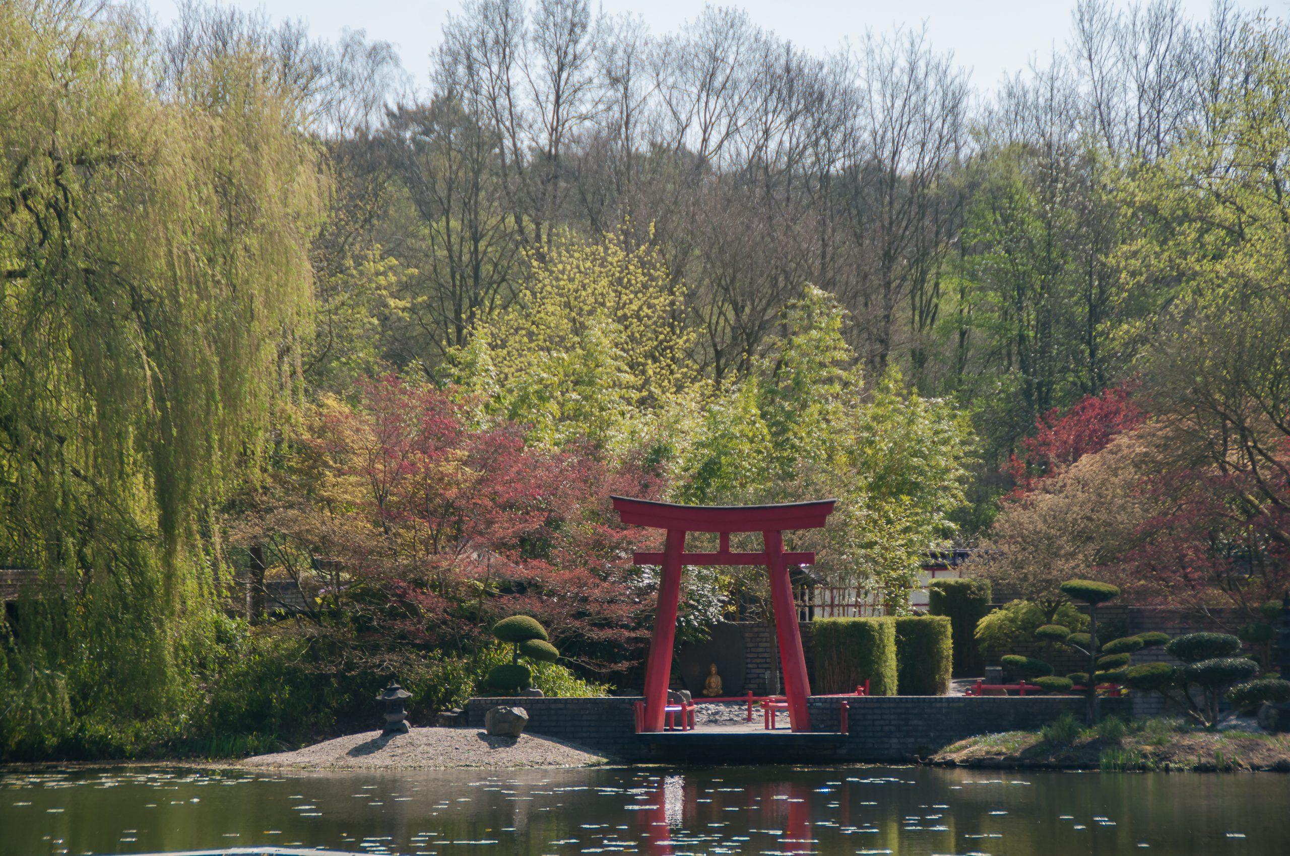 Aflevering 2 | Japanse Tuin - Video